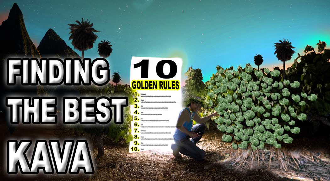 Learn about the golden rules that make the best kava you can buy.
